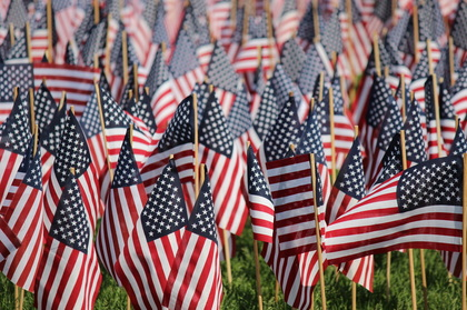 Picture of American Flags showing shallow depth of field